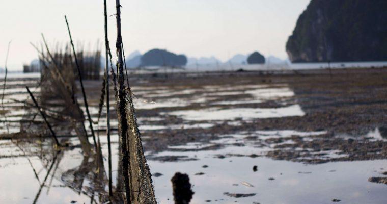 5 days in krabi nets from the ocean