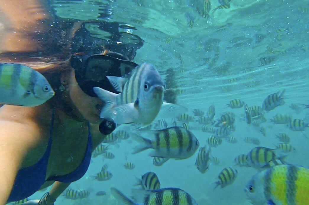 alyssa scuba diving photobombed by fish