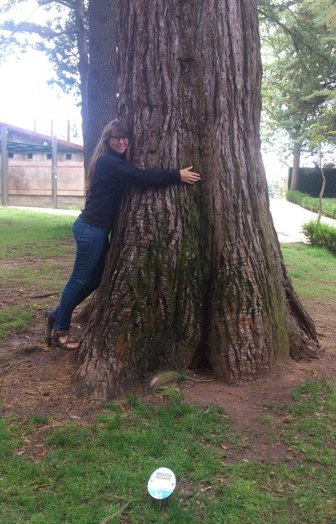 Angela hugging a large tree