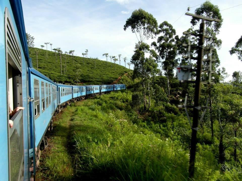 wow Holly photo of a blue train zipping through a green hill